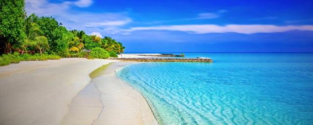 pexels-playa-orilla